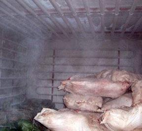 黑龙江肉类冷库